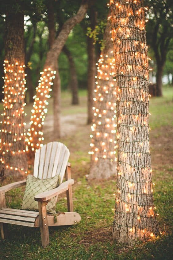 luces-de-hadas-para-árboles-al aire libre