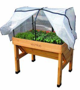 greenhouse vegtrug
