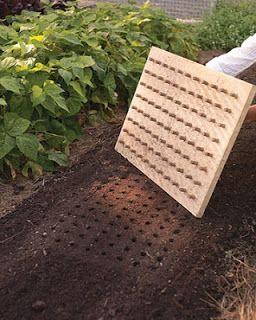 seed planting board