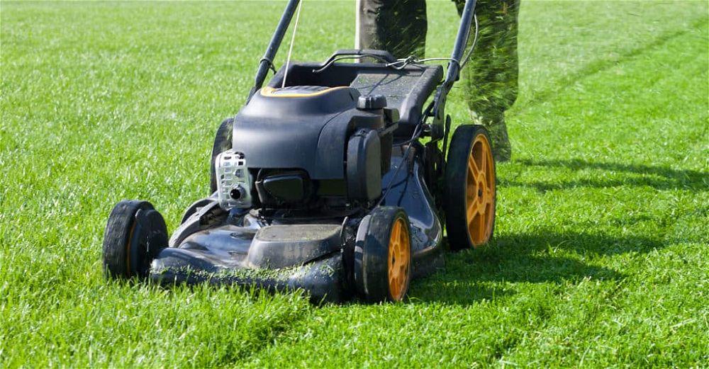 best-lawn-mower-uk