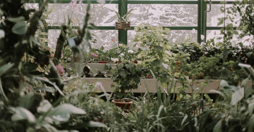 gardening-gifts
