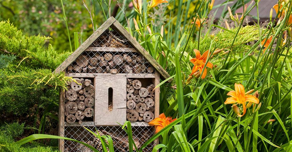 insect-hotel