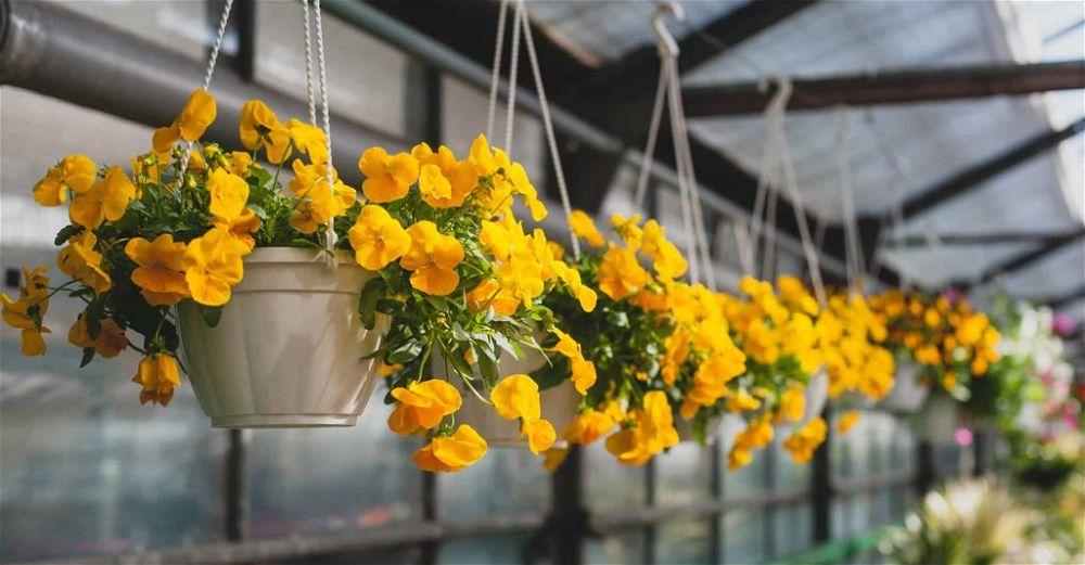 artificial-hanging-basket