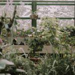greenhouse-heater