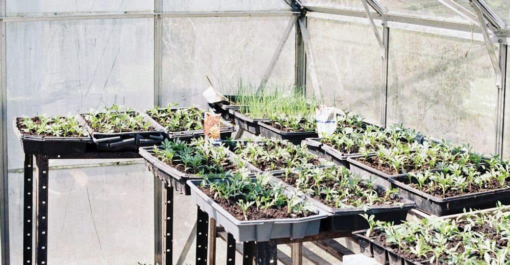 greenhouse-insulation