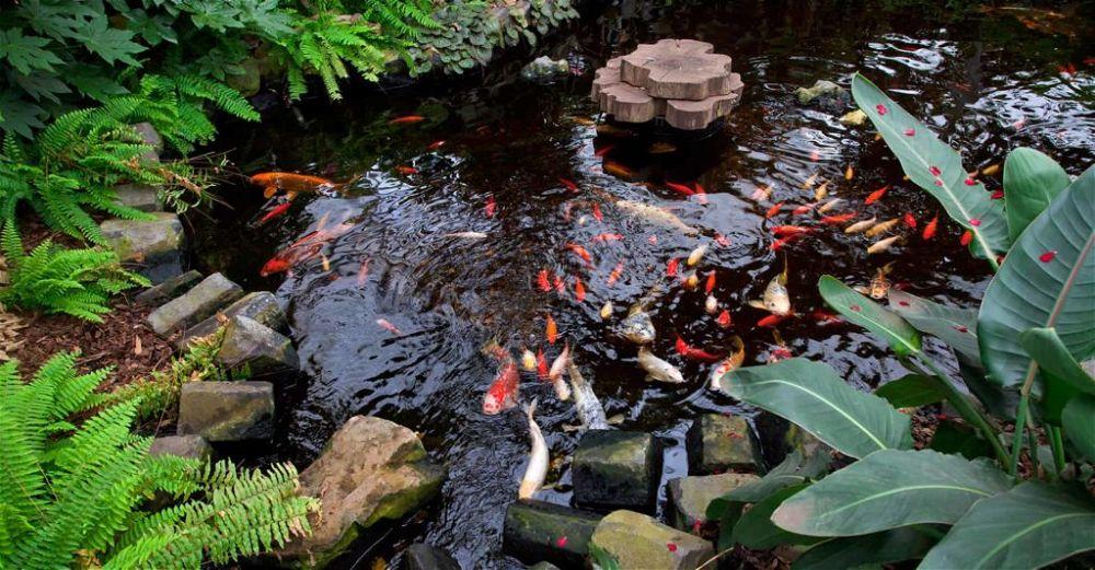 garden pond aerator
