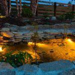 pond-lights