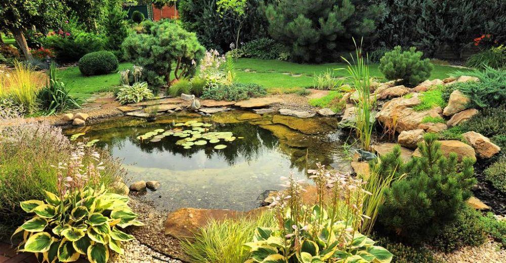 pond-paint