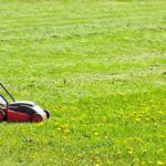 best-lawn-mowers-for-small-gardens