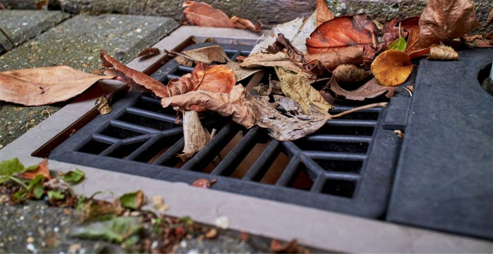 best-outdoor-drain-cover