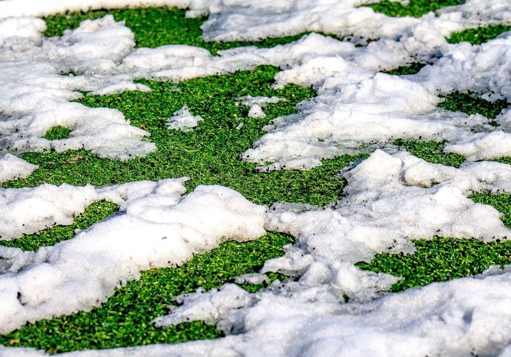 artificial-grass-benefit-always-green