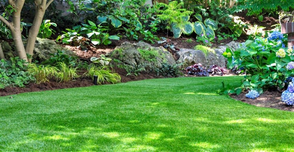best-brush-for-artificial-grass-astro-turf