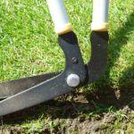 best-lawn-edging-shears
