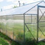 best-polycarbonate-greenhouse