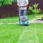 best-roller-lawn-mower