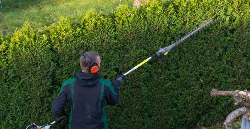 best-telescopic-pole-hedge-trimmer