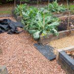 best-weed-membrane