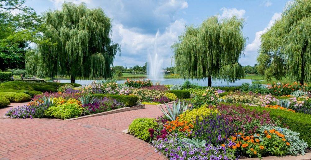 chicago-botanic-garden-beginners-guide-anatomy