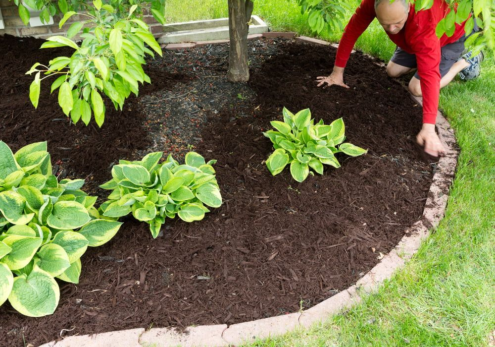 adding-garden-edge