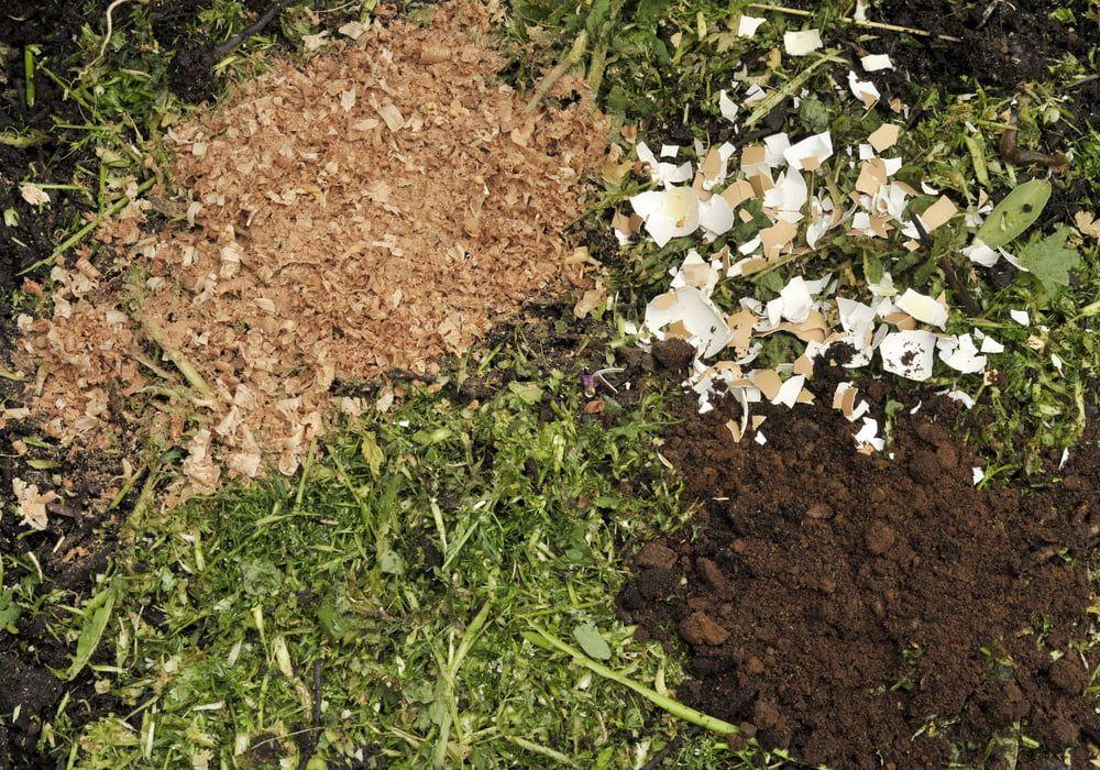 coffee-ground-aas-mulch