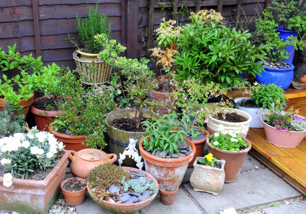 garden-containers-type