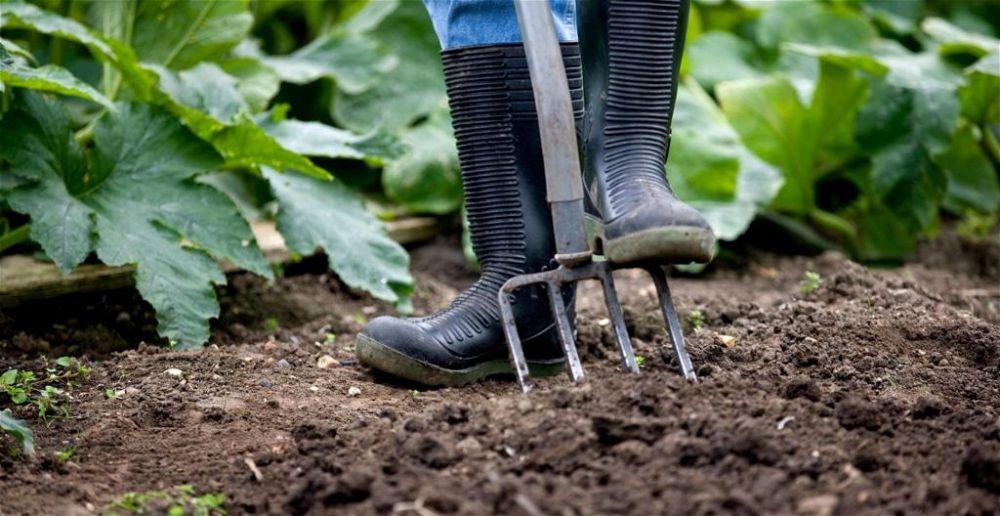 best-wellies-for-gardening
