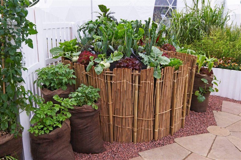 12. Patio Vegetable Garden
