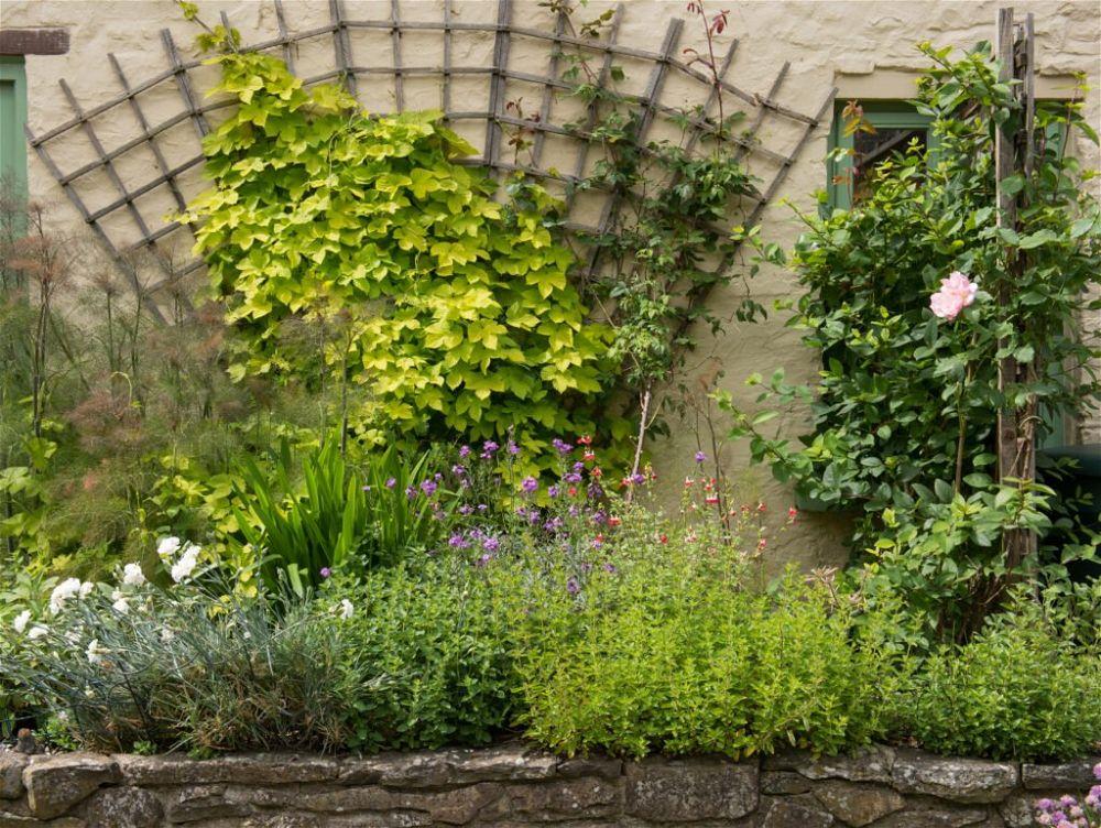 26. Garden Wall Trellis