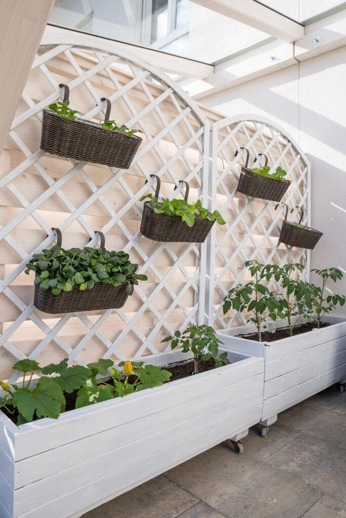 5. Cheap Garden Patio