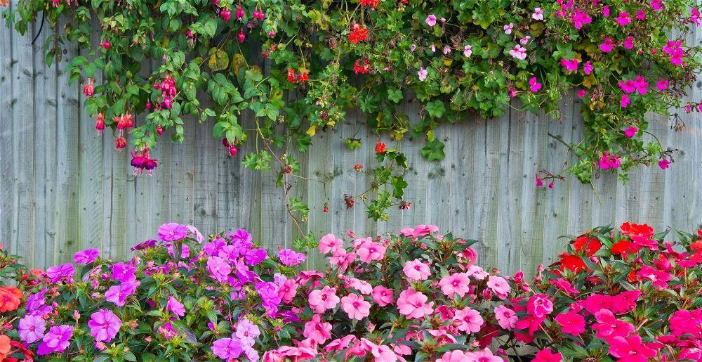 garden-fence-ideas
