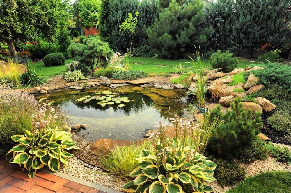 10. Estanque de jardín natural