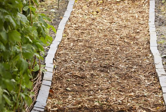 2. Inexpensive Garden Path