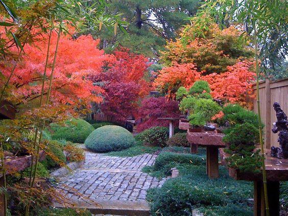 24. Jardín Zen Japonés