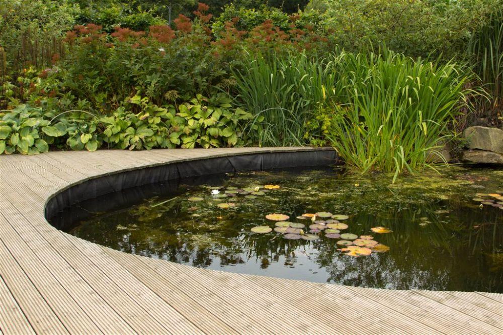 4. Diseño de estanque de jardín