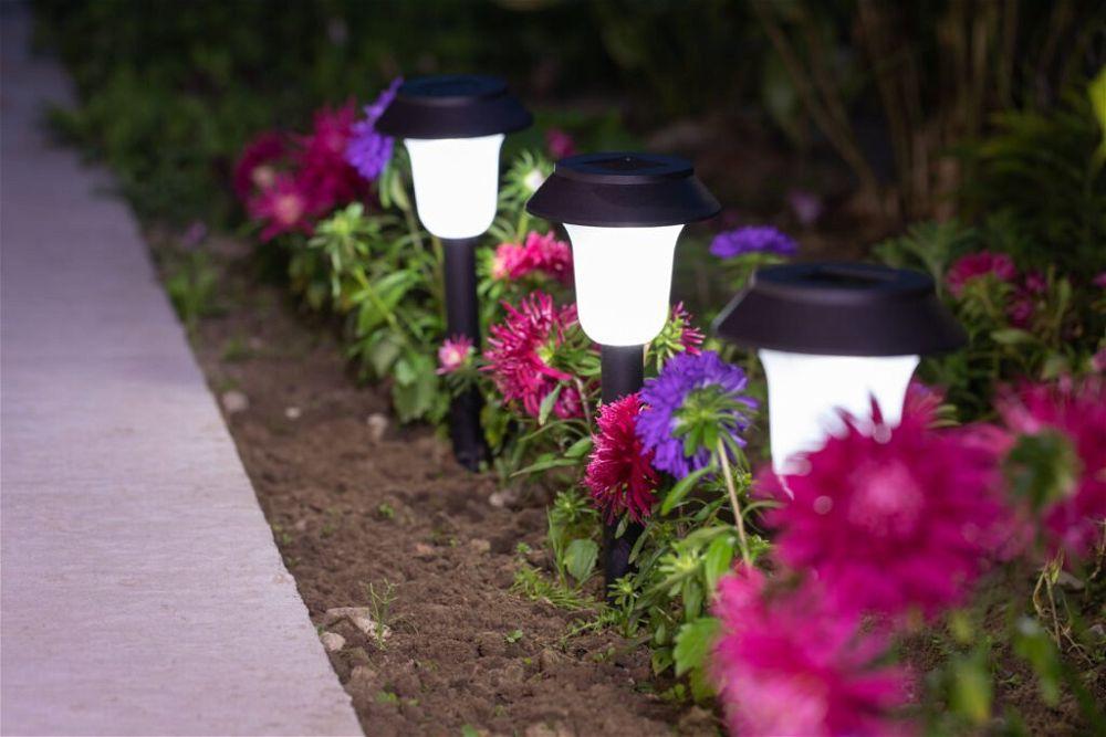 5. Garden Path Lighting