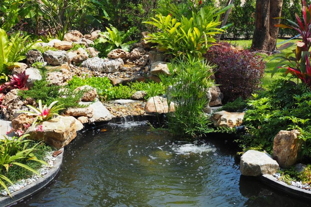 5. Cascada del estanque del jardín