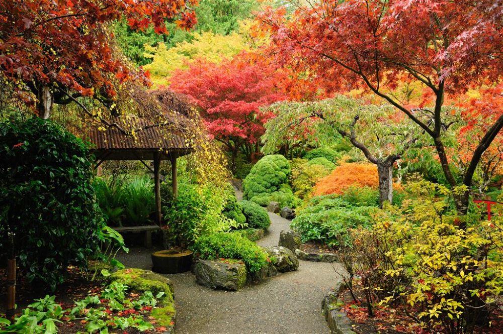 5. Diseño de jardines japoneses