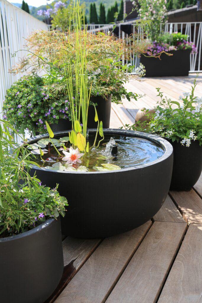 9. Estanque Easy Garden
