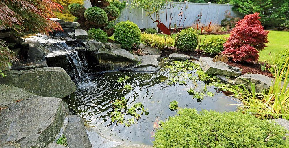 garden-pond-ideas