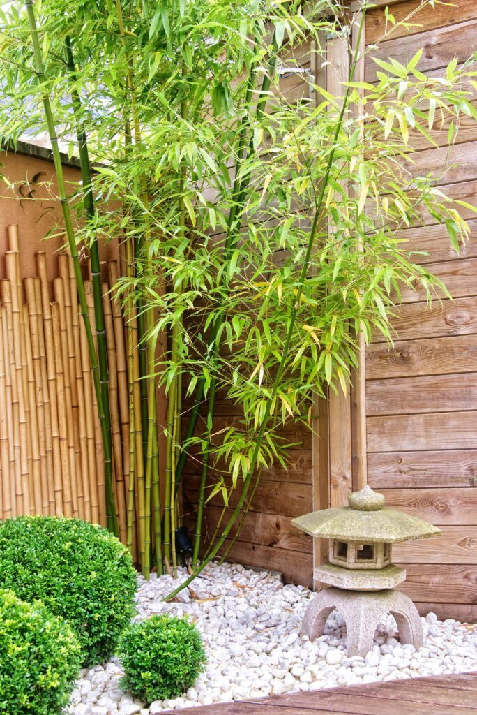 18. Zen Garden on a Budget