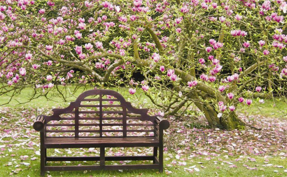 19. Garden Bench Seating
