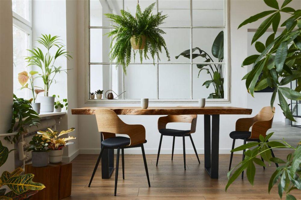 2. Garden Room Interior