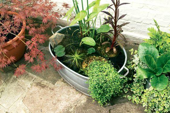 22. DIY Summer Garden on a Budget