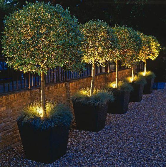 24. Back Garden Lighting