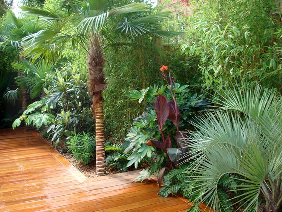 37. Tropical Garden Landscaping