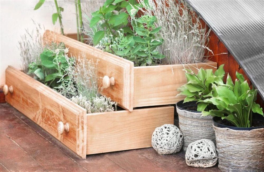 9. DIY Garden on a Budget