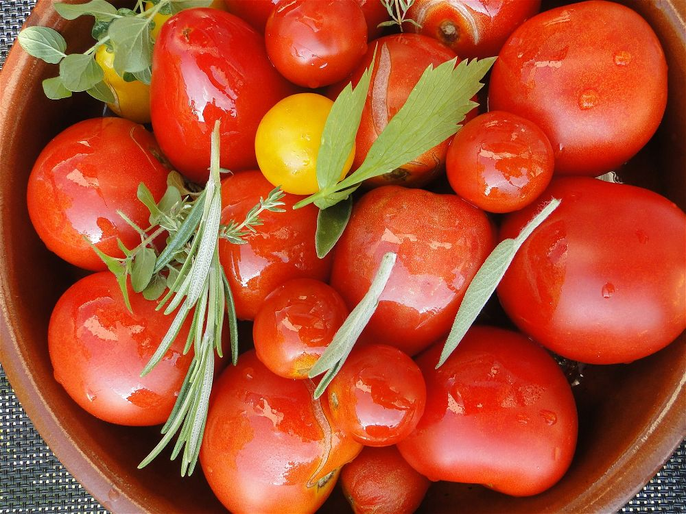 Tomatoes in bowl
