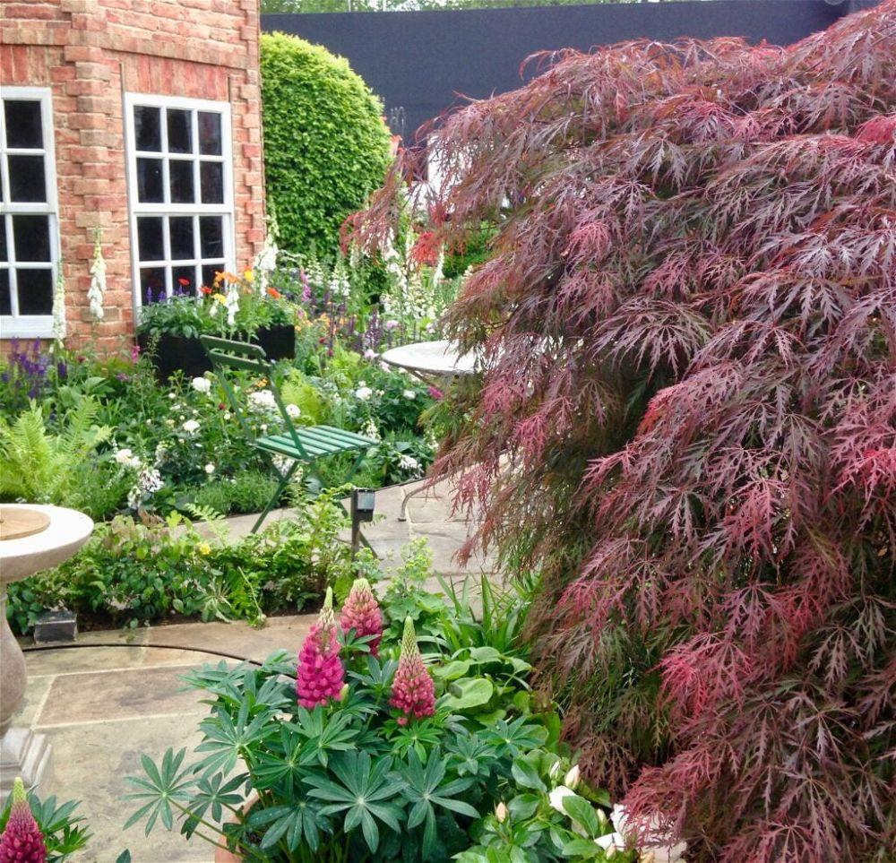 Show garden 2 - Chelsea Flower Show