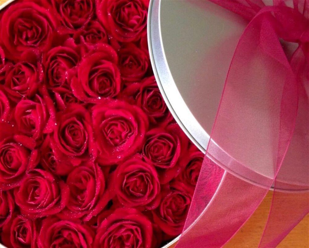 Valentine roses in tin