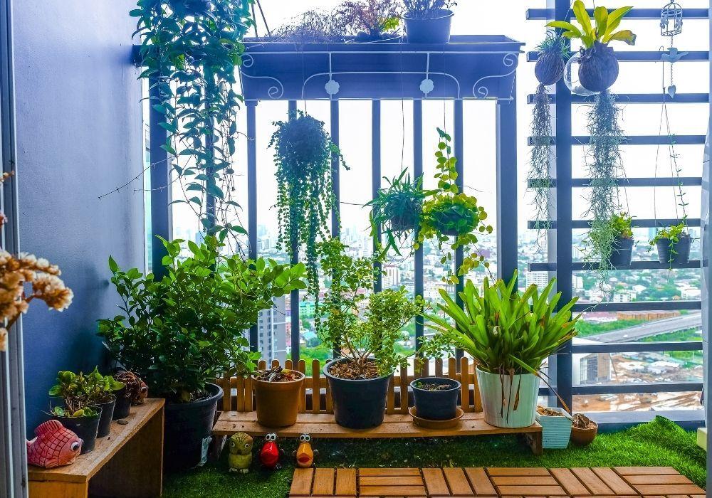 balcony-garden-hanging-plants